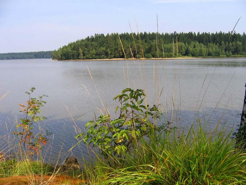 Rybník Velké Dářko